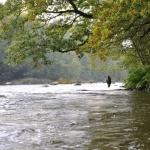 Fiske på Härnässträckan