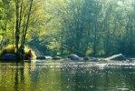 Majestätisk höstfiskeupplevelse