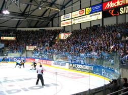 Ishockeysarg