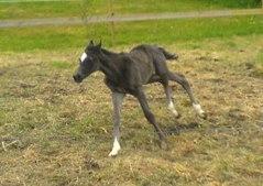 Esther 2 dagar gammal