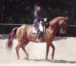 Mannerheim Foto Robert Nagy
