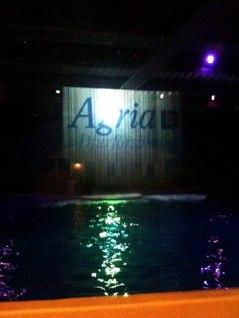 Agrias logga på vattenfallet i Delfinariet.