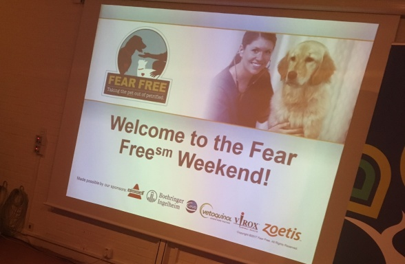 Fear free weekend i Göteborg var en stor höjdpunkt under 2017