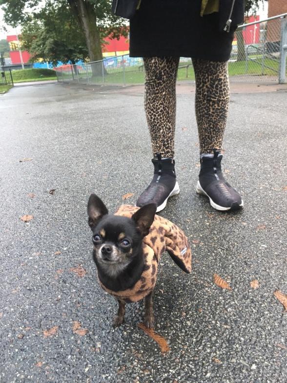 Jannice Kindsjö och min lilla hund Betty passade på att matcha lördags-outfiten.