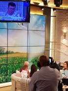 TV4 bild 1