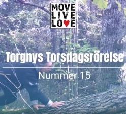 Torgny Steens Torsdagsrörelse 15