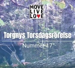 Torgny Steens Torsdagsrörelse 17