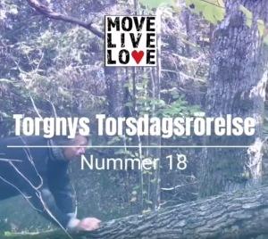 Torgny Steens Torsdagsrörelse 18