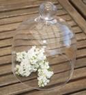 charmig glasklocka