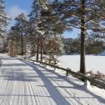Jori Selin_Vinterväg