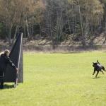 Merlin-träning-rondering-mars 2012-1