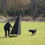 Merlin-träning-rondering-mars 2012-2
