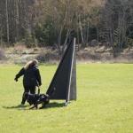 Merlin-träning-rondering-mars 2012-4