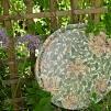 Rund bricka 46 William Morris - Honeysuckle