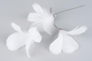 Vita fjädrar på ståltråd - Vita fjädrar på ståltråd set om 12
