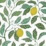 Tyg Ljungbergs - Citrus Limon - Tyg Ljungbergs - Citrus Limon Bomull/Lin