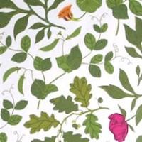Tyg Ljungbergs - Botanica