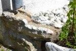 Stensatt avrinning från stuprännorna på framsidan. Vattnar rabatten samtidigt!