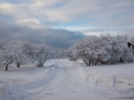 Hvidagården i vinterskrud