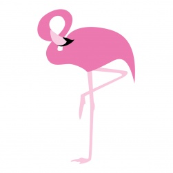flamingo_highres