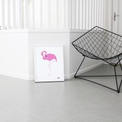 flamingo_miljo_highres