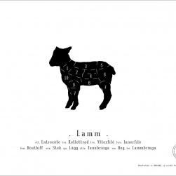 Lamm - Trepack