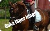 Boka ridlager1