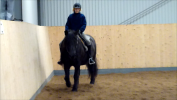 Cissi Wikström rider Joysan