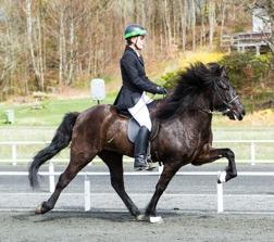 Milla och Berglind Rósa Guðmundsdóttir blev A-klassade vid sin första tävling, bilden är från tävling på Backome. Foto: Helena Nilsson.