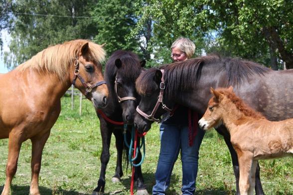 Bilden ovan visar 4 generationer, foto: Emma Jansson