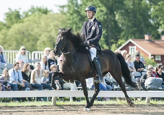 Milla från Ammor med sin nya ryttare/ägare Jack Eriksson (YR)  i A-final på SM 2015. Foto www.toltaren.se