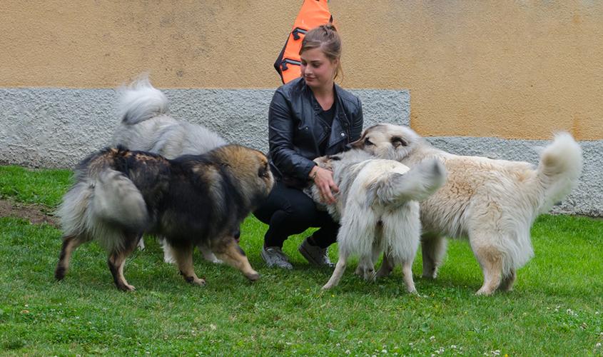 Matilda med Arash, Leah, Aurora och Kelly