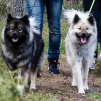 Zoe och Aurora