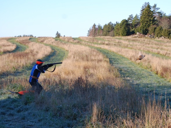 Vår kompis Lilian Westerlund in action på fasanjakt. Mycket på denna bild måste tränas. hunden ska vara lydig, skyttet ska funka, liksom den efterföljande apporten...