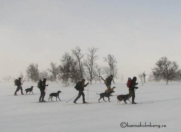 Bild från 1 provhelgen, där vädret var inte var med oss.  Foto: Hanna Holmberg,