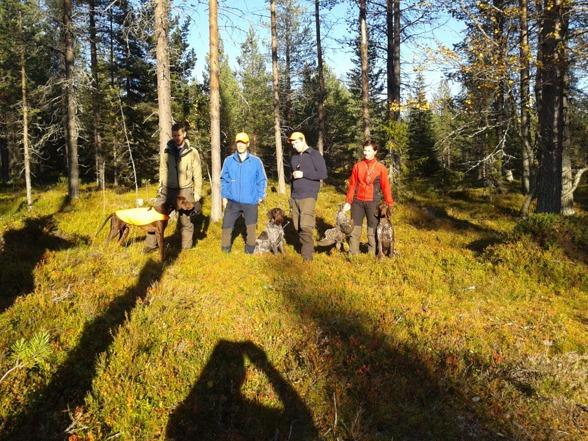 Söndagens pristagare i vårprovgrupp: Andreas med Fjällbrisens Hyvää Uno, domare Tord Stenlund, Juha med Carat, Jaana med Lynx.