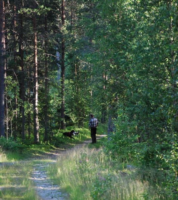 Svante Morén och hans Altersundets Milito visade hur det ska gå till i ÖKL - 10-10, bra jobbat.