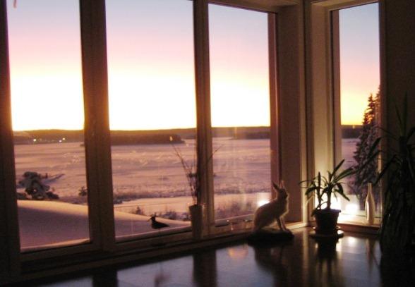 Utsikt från vårt temporära sovrum. Vi vaknar med ljuset....