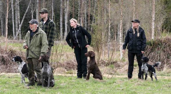 Fokuserade förare och lösa hundar - snyggt!