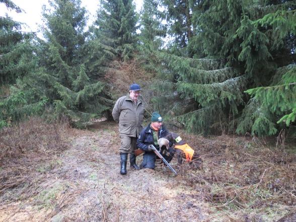 I Finland krävs sittande avlämning - av hunden i alla fall :-) Domaren var mycket nöjd med Jagr's varma apport.