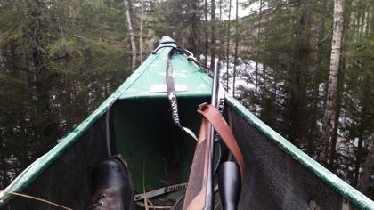 Byskeälven svämmade över och bjöd på spännande kanotfärder i skogslandet