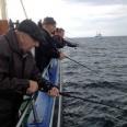 fiske 4