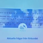 20191117 Skånedagen i Lund (16)