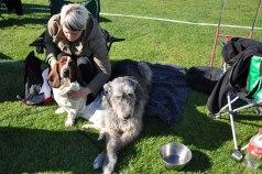 Tilde och Medea väntar på sin tur i Askersund 2011