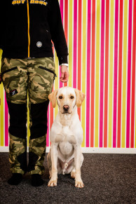 Inspirationskurs–prova på olika hundsporter - Start 29/5 Marja S
