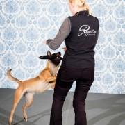 Klickerkurs - Blir en bättre hundtränare!