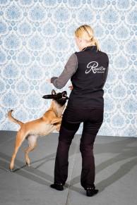 Klickerkurs - Blir en bättre hundtränare m Karin Haglund - Klickerkurs - Karin Haglund