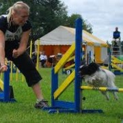 Agility Privatlektion