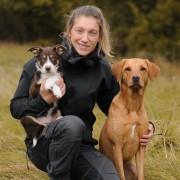 Valpkurs för tävlingslydnadshunden