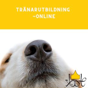 Tränarutbildning-Online - Tränarutbildning-online